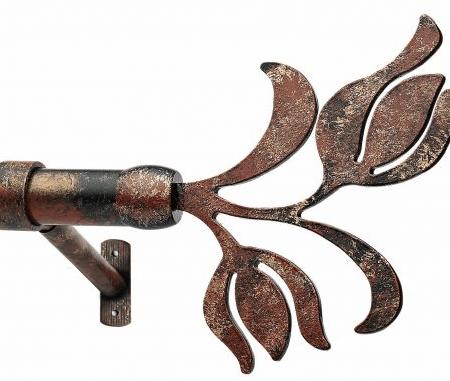 Τουλίπα